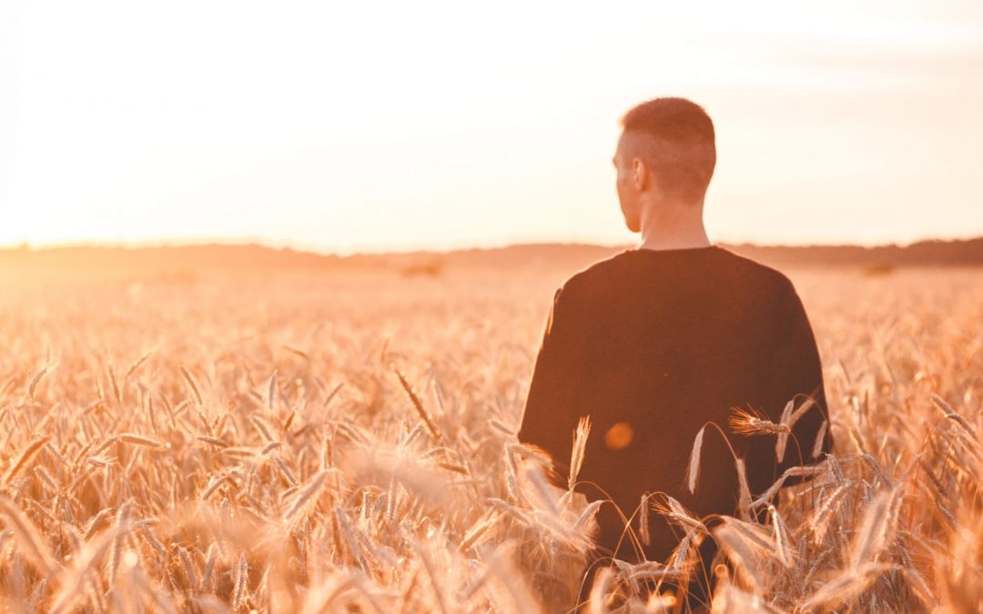 Mission leaders: do you want your harvest workers to be fruitful—like the early disciples?