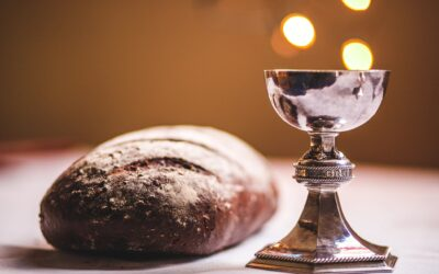 """""""New wine"""" for the ACCELERATION necessary for fulfilling the Great Commission during these VERY Last Days"""